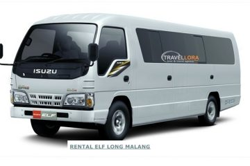 isuzu elf long indolora