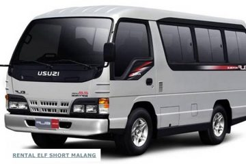 isuzu elf short indolora