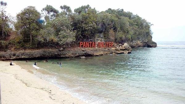 pantai-ngliyep-malang